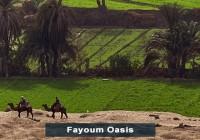 Egypt-Fayoum-Oasis
