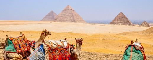 Egypt-Pyramids-Giza-Camels